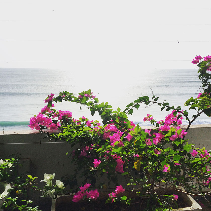 turismo_srilanka