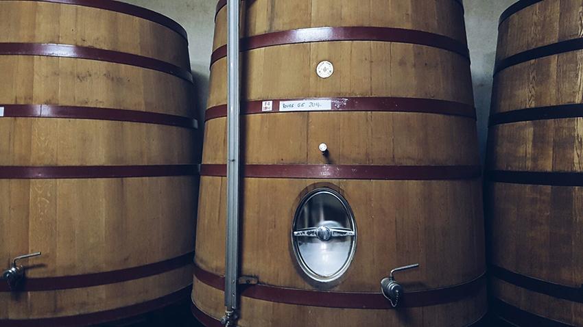 botte_fermentazione_domaine_leccia