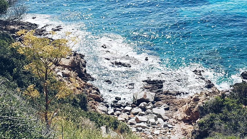 spiaggia_favone
