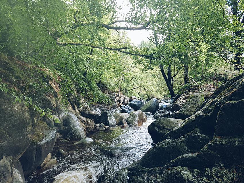 natura_galles_rafting