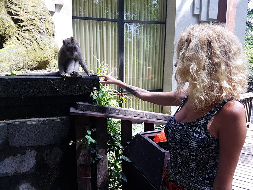 lisa_rosso_scimmie_bali_viaggio