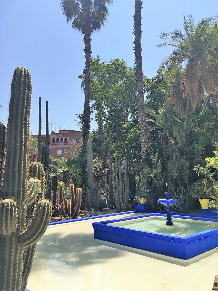 giardini_majorelle_marrakech_cosa_fare