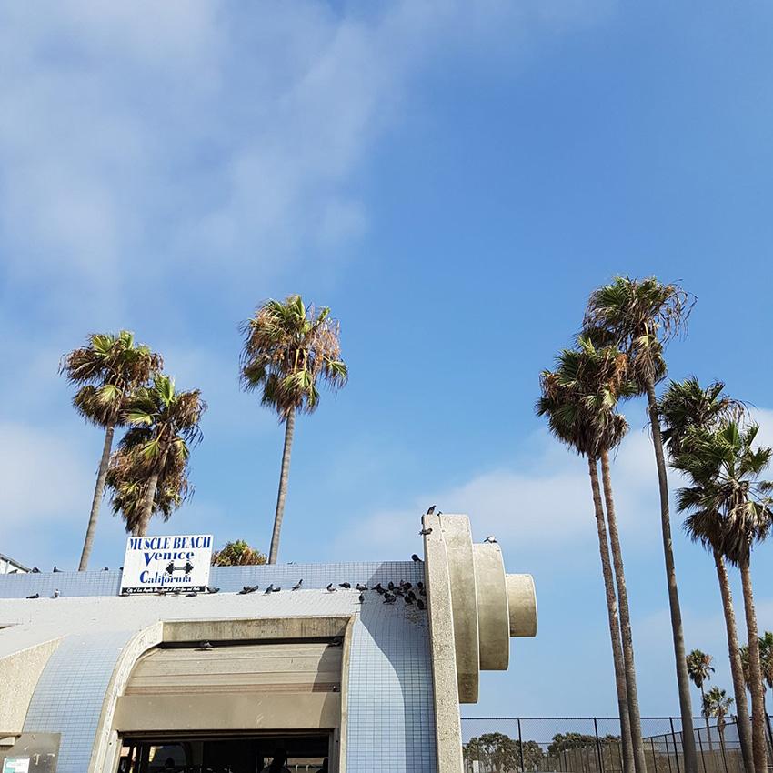 california_viaggio_consigli_cosa_fare
